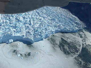 Previous Article